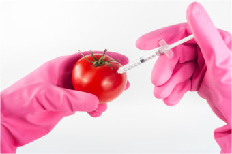 Injecting a tomato photo